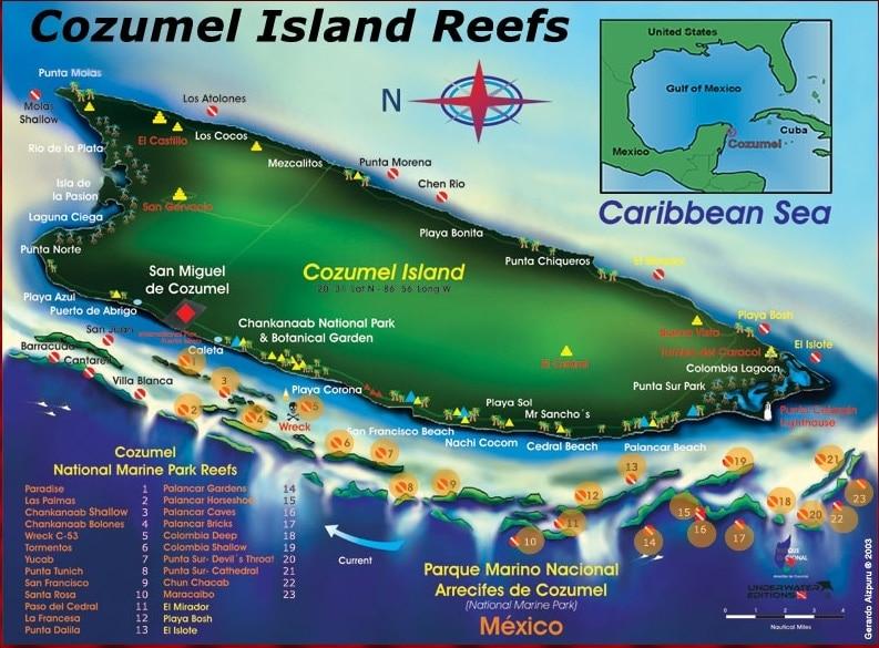 Cozumel Island Reefs