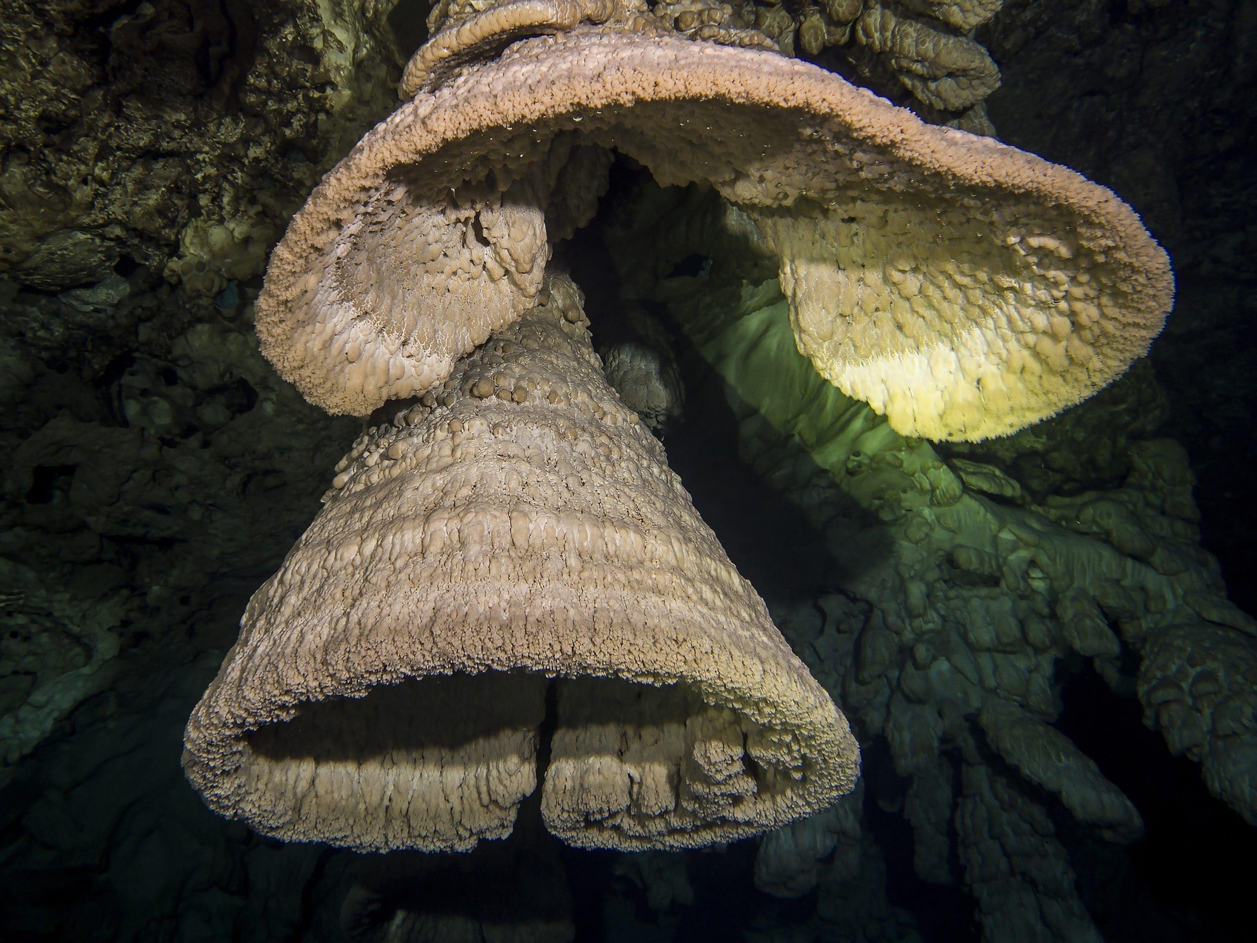 Höhlentauchen in Mexiko