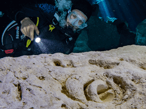 Fósiles Cenote