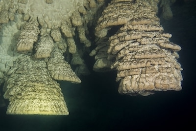 Cenote Holbox